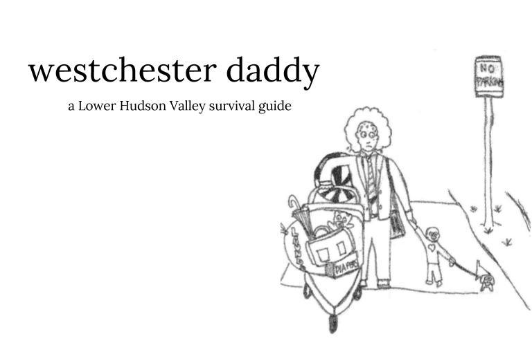 westchesterdaddy.com header image